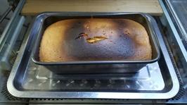 sponge_cake_4egg_05_20
